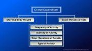 چگونه تمرینات ورزشی سبب کاهش وزن می شود؟