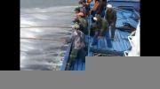 صید ماهی ویر|تُن| با ماهی زنده.صید بینظیر