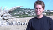 کشف جمجمه اژدها در ساحل انگلیس!