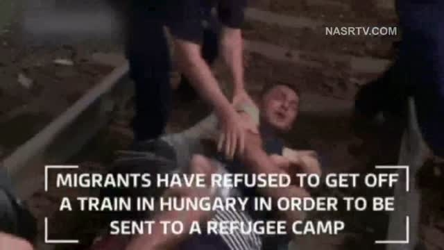 برخورد خشونت آمیز با پناهجوی سوری