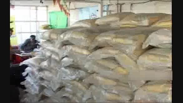 توزیع کالاهای «طرح حمایت غذایی» از ۳۰ خرداد