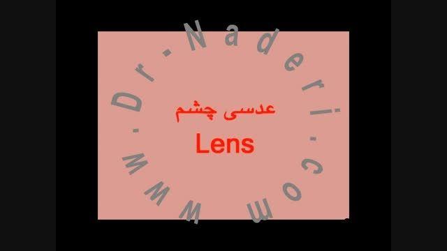 عدسی-ساختمان چشم-مرکز چشم پزشکی دکتر علیرضا نادری