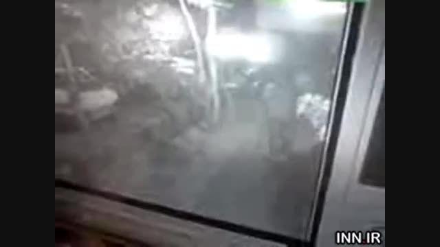 فیلمی ترسناک از یک زورگیری خیابانی