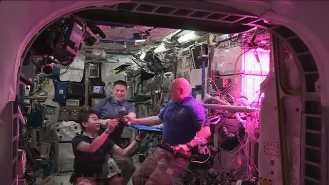 فضانوردان کلم فضایی خوردند!