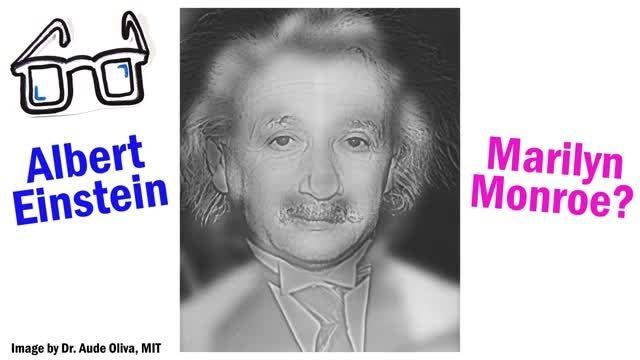 تست بینایی با آلبرت انیشتین و مرلین مونرو