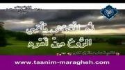 محمد لیثی - یادی از محمد محمد ابوالعلا به مناسبت وفاتش