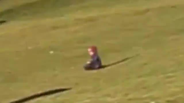 حمله عقاب غول پیکر به کودک و بلندکردن کودک از زمین
