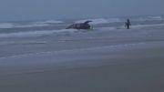 سرازیر شدن ماشین به سمت دریا