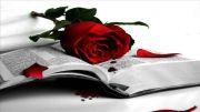 آهنگ زیبای عشق از رضا صوفی