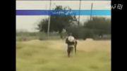 عملیات اسدالله الغالب، علیه داعش با حضور سردار سلیمانی