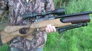 یک ریویو از تفنگ دی استیت مدل ایر ولف