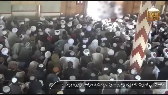 بیعت گروهک های تروریستی با رهبر جدید طالبان
