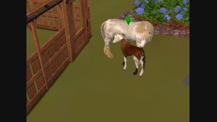 یک صحنه خیلی زیبا از سیمز 3 حیوانات خانگی