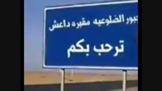 ضلوعیه، شهری که کمر داعش را در عراق شکست