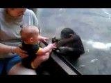 بازی بچه میمون و دوست کوچولوش!