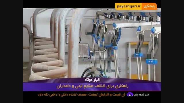 راهکاری برای اختلاف صنایع لبنی و دامداران