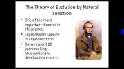 داروین و تحقیق مهم او