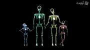 خانواده در اشعه ایکس