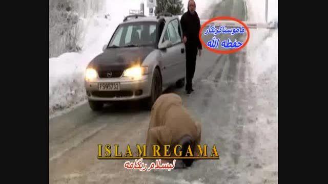 محبوبیت ماموستا کریکار در دل مردم نروژ - م.کریکار