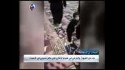 شهادت عزاداران حسینی در عربستان