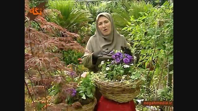کاشت و نگه دای گیاه لیزانتوس