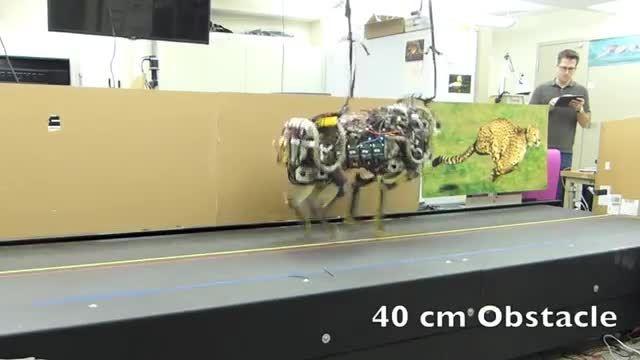 روبات Cheetah دانشمندان MIT