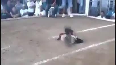 خروس جنگی(سر خروس به یه حرکت کنده میشه)