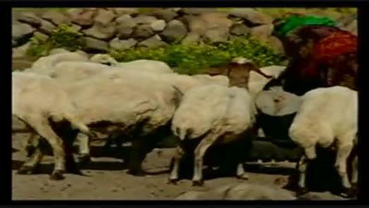 جاذبه ها توریستی آذربایجان غربی پایتخت تمدن ترکان ایران