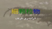 چین: واژه ای جدید برای ذرات خطرناک پی-اِم 2.5 در هوا