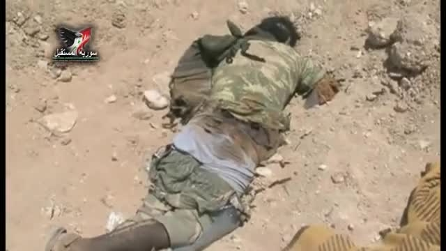 هلاکت تروریست های داعش در پالمیرا توسط ارتش سوری
