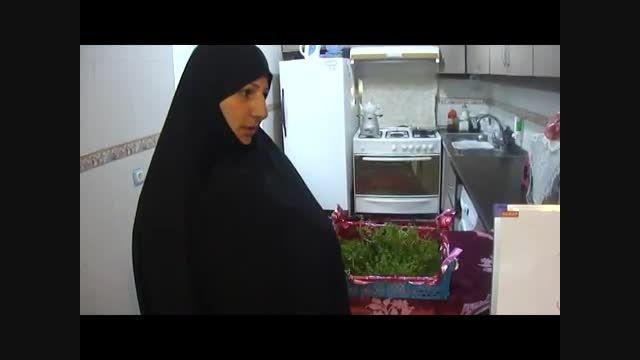 تولید سبزی ارگانیک در منزل و گلدان(organickhanegi.ir)