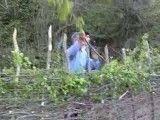 ساخت حصار در شمال با شاخه های درخت