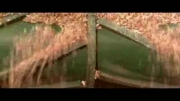 کارخانه پرورش قارچ و روش پرورش قارچ
