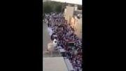 تشییع باشکوه شهدای عاشورای عربستان