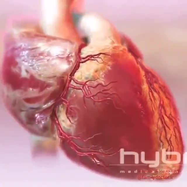 تپش قلب طبیعی و دریچه قلبی