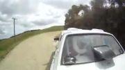 راننده ای که  هندلینگ پیکان رو بلد نباشه راننده نیست