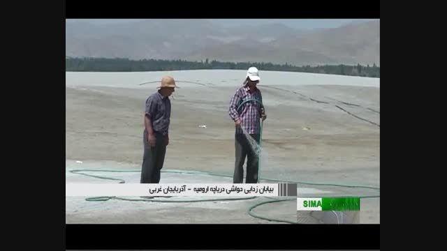 بیابان دریاچه اورمیه --- تصاویر جدید