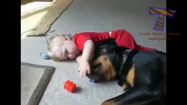 لب گرفتن کودک از سگ