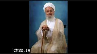 سخنرانی استاد رائفی پور درباره آیت الله مکارم شیرازی