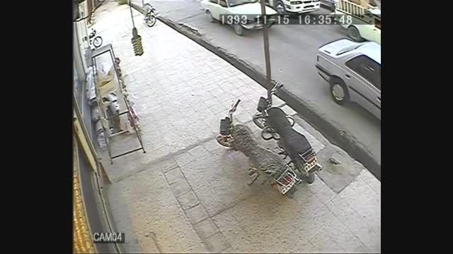 سارق آماتور در حال سرقت در طلافروشی بهبهان/ فیلم