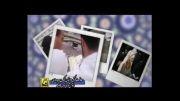 ماه مبارک رمضان -  معاونت فرهنگی و اجتماعی مترو تهران