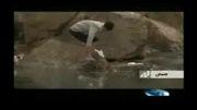 فاجعه زیست محیطی در گرگان رود