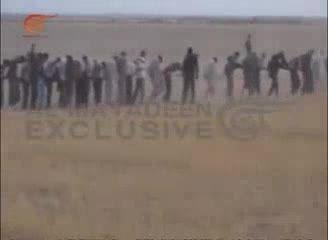 صدها داعشی در عراق اسیر شدند