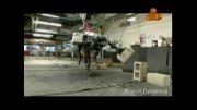 فیلم/ حرکات باورنکردنی روبات چهارپا