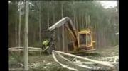 کلیپ دیدنی از قطع درختان با دستگاه های پیشرفته و حرفه ای