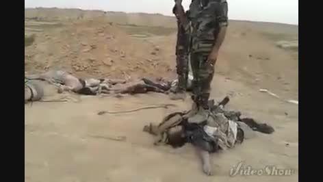 پاتک ارتش سوریه و قبیله آل شطیط به داعش