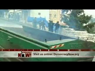 18 گاو فلسطینی، تهدید برای امنیت اسراییل