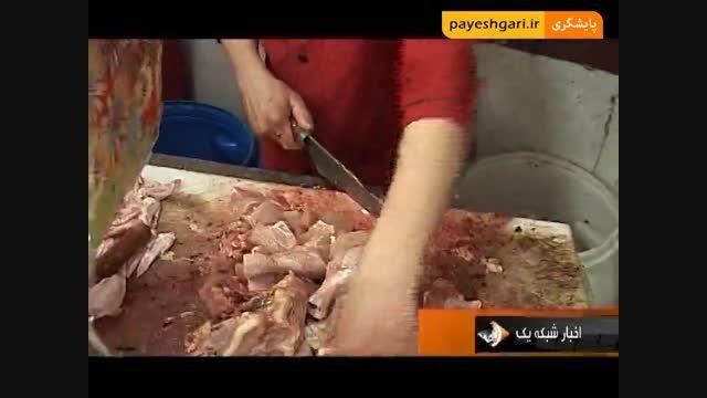 گزارش با موضوع گرانی مرغ