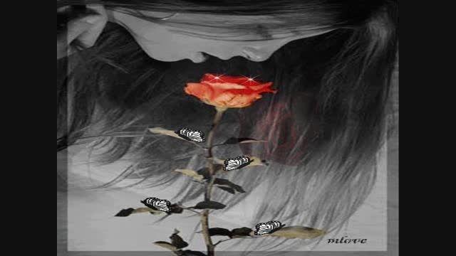 ۱۰۰۰ گل سرخ تقدیم به معلم های گل