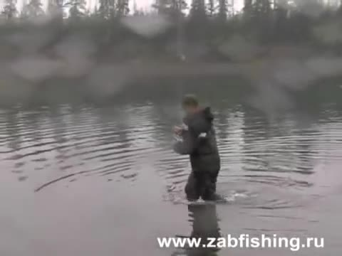 خوشمزه ترین ماهی ازاد 50 کیلویی در قلاب